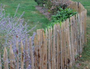 Ganivelles dans le jardin