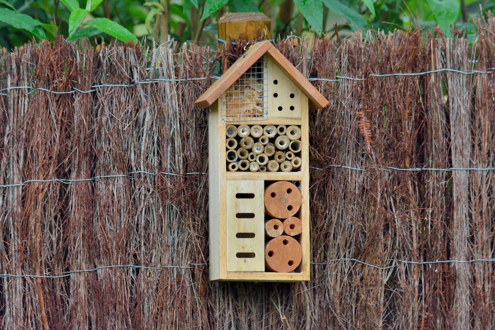 Boîte à insectes dans un jardin