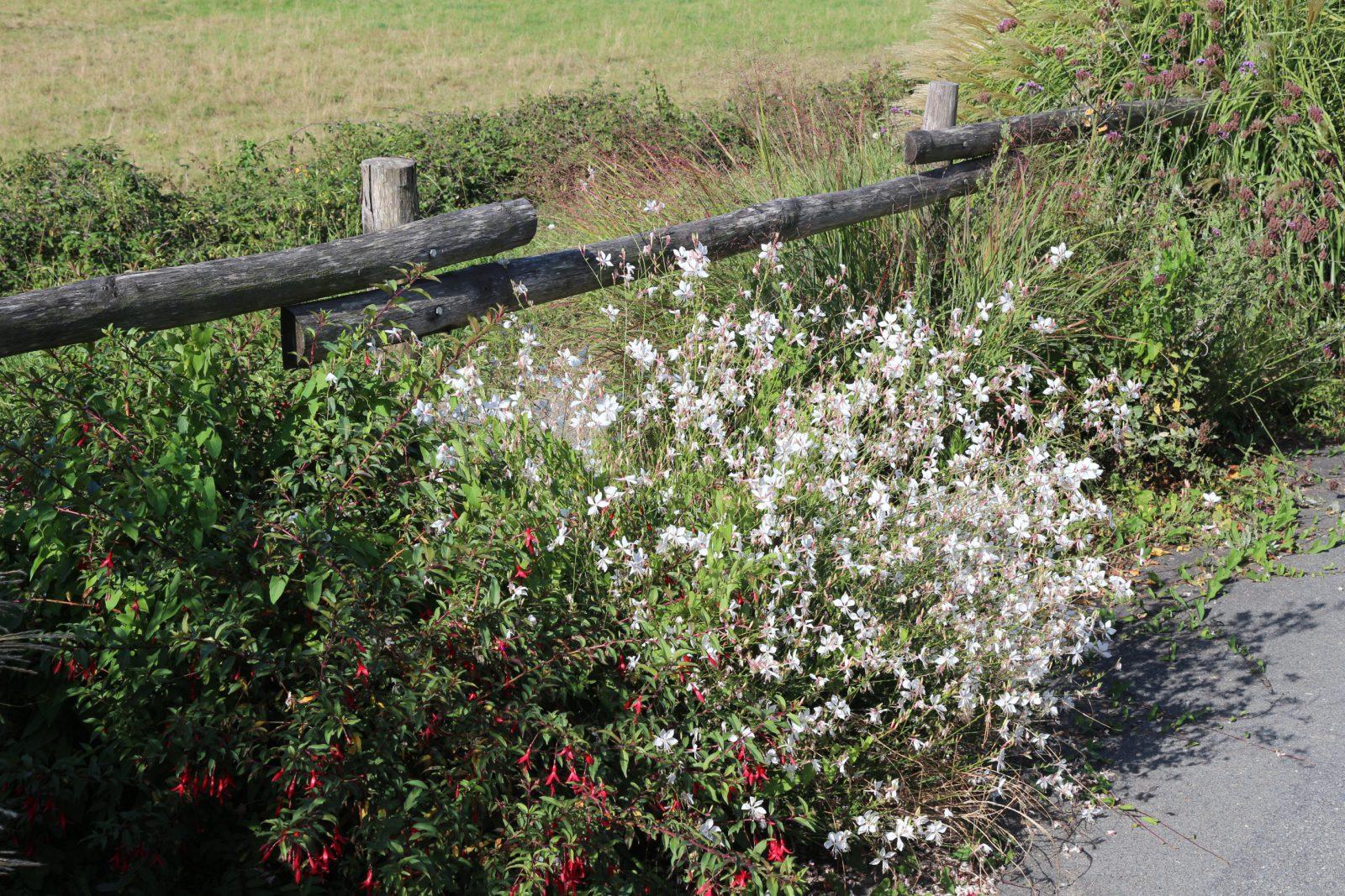 Piquets jardin fleuri